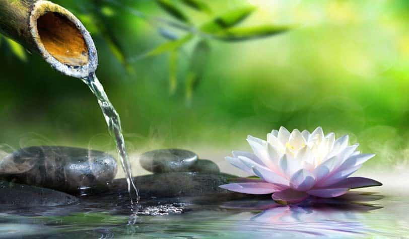 Laghetti artificiali fontane e giochi d acqua laghetti for Creare laghetto artificiale