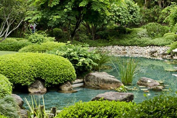 Laghetti artificiali fontane e giochi d acqua laghetti - Laghetti artificiali giardino ...