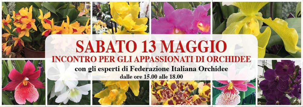 banner-orchidee-13-maggio
