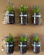 Vasi-per-piante