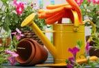 consiglio-annaffiare-le-piante