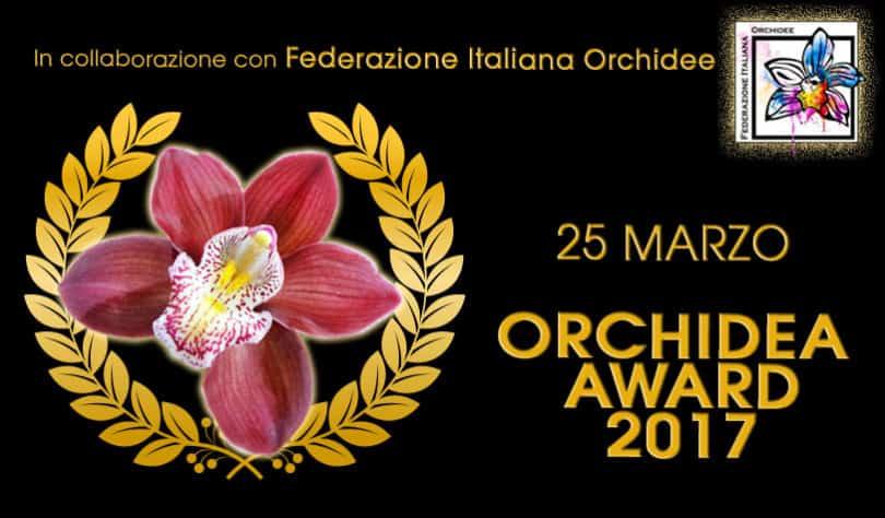 premiazione orchidee